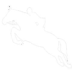 Prairie Pines Sporthorses