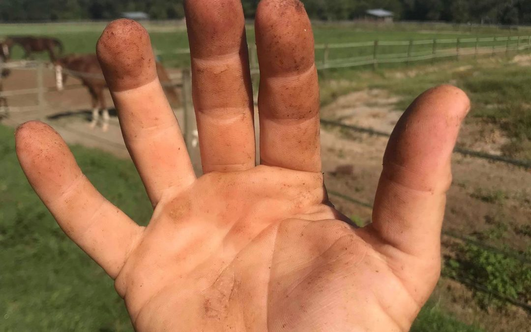 Does your trainer's hands look like this?